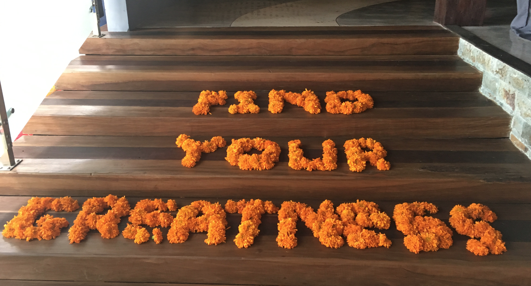 find-your-greatness-marigolds-bali